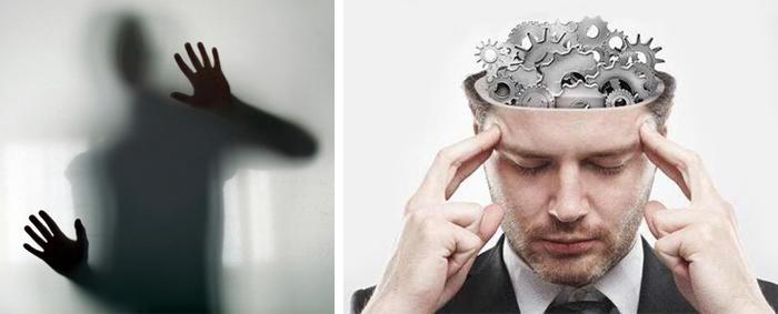 психология поведения 0