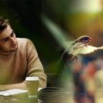 Тренинг по психологии онлайн — ЕРУНДА? А вдруг нет?