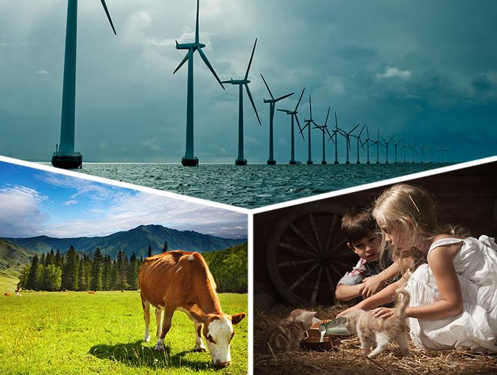 День экологических знаний. Маленькие защитники большой природы
