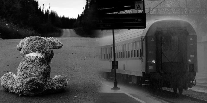 Служба под звездами. Поезд